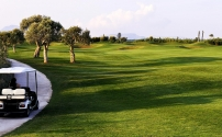 Get on with greening golf