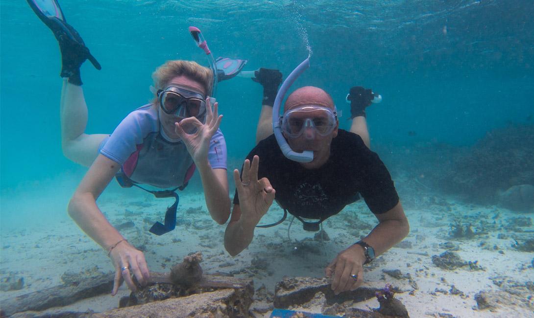 Global coral reefs