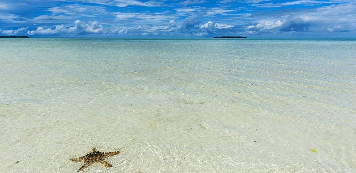 Why we're loving Palau