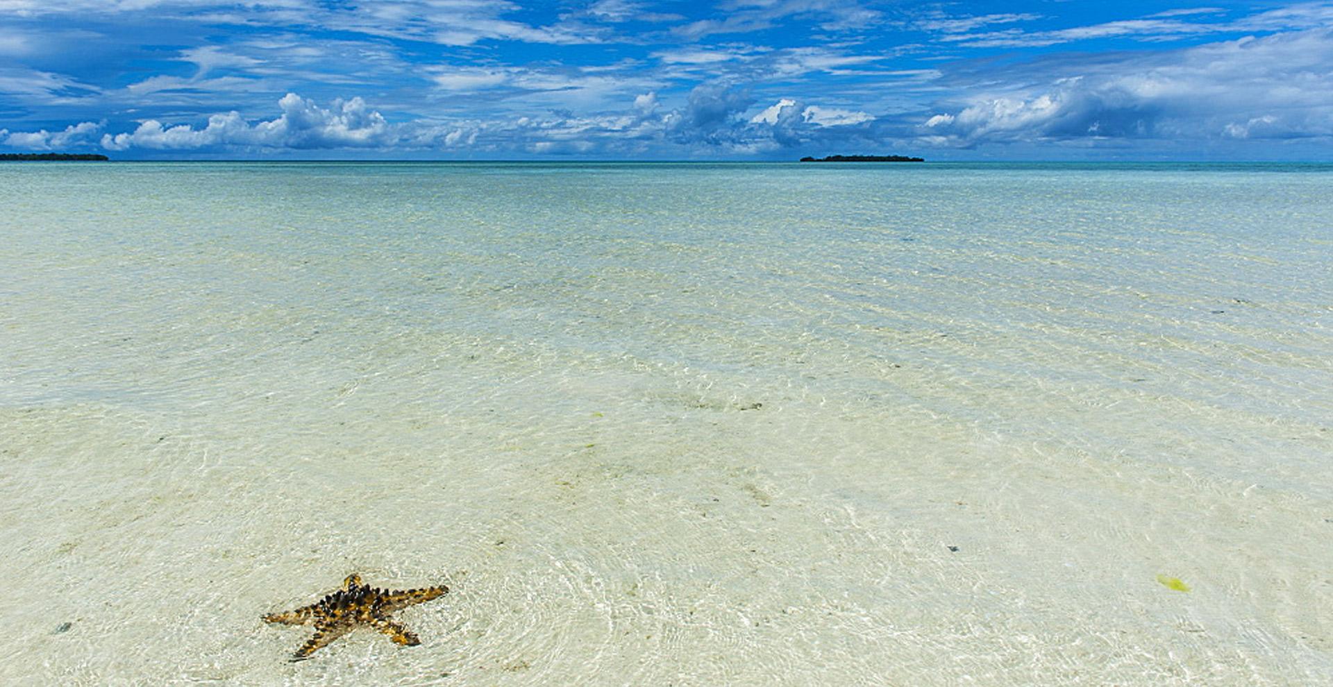 This Month We're Loving: Palau