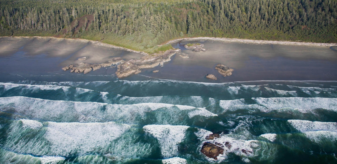 Why We're Loving Tofino