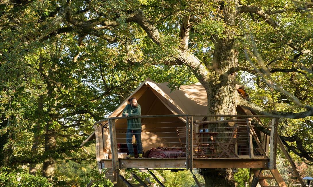 Little Owl Tree House