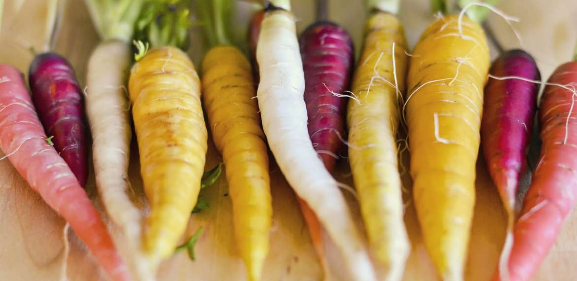 Top 11 Plant Foods for Our Future