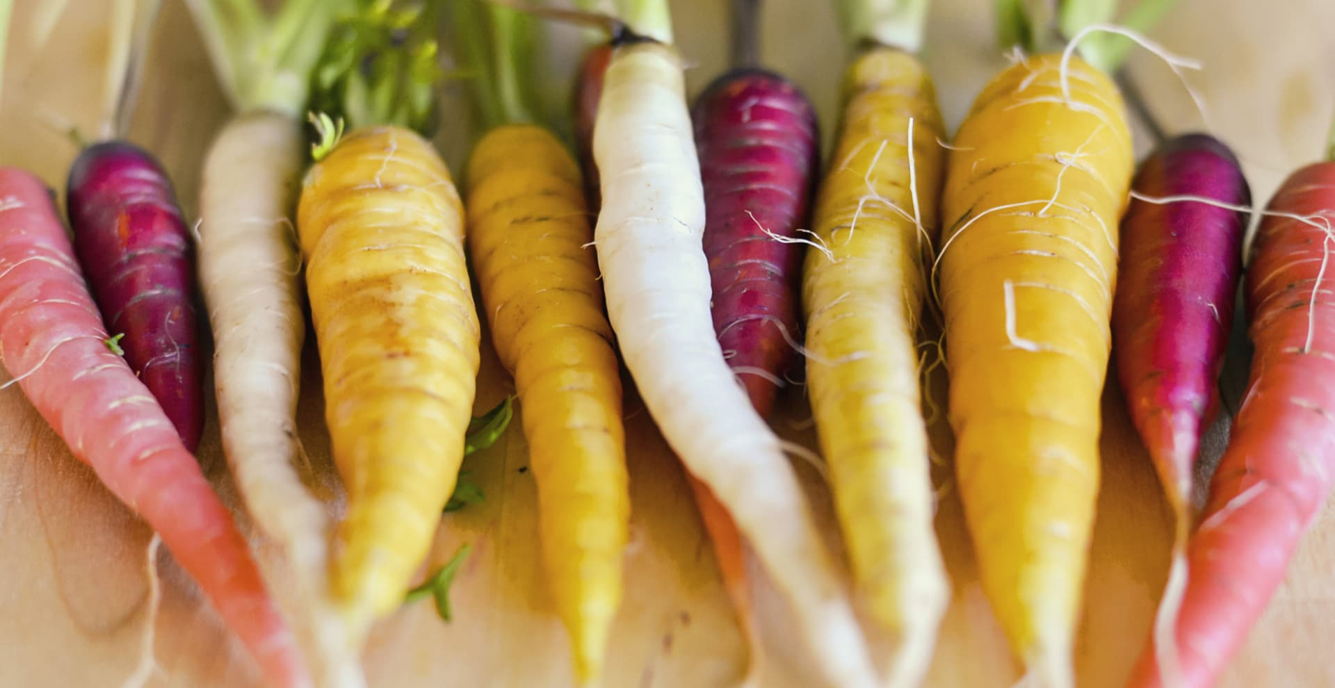 Raddish - Plant Food