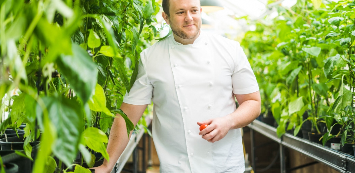 6 Sustainability Tips for Hotel Chefs